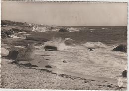 Finistère :  CONCARNEAU :  Vue   De La  Pointe  Du  Cabellou - Concarneau