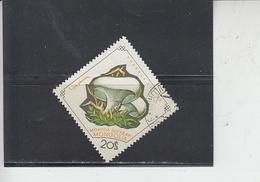 MONGOLIA  19642 - Yvert 304 - Funghi - Funghi