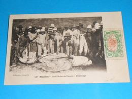 La Réunion ) Une Pèche De Requin - Le Dépeçage  - Annèe 1912 - EDIT : Angelin - Saint Denis
