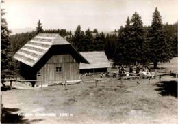 Koralpe - Göslerhütte 1660 M * 23. 7. 1962 - Wolfsberg