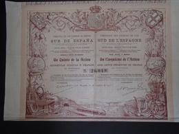 ESPAGNE - MADRID - CDF DU SUD DE L'ESPAGNE - TITRE DE 1/5eme D'ACTION DE 500 FRANCS - MADRID 1910 - Shareholdings