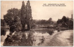 25 BESANCON-les-BAINS - Le Doubs Et L'Ile Des Moineaux - Besancon