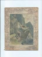 1896 Dénicheurs D'Aigles Cahier Bien Complet Couverture Protège-cahier 225 X 175 Mm 5 Scans - Protège-cahiers