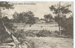 Rheezer Belten Bij Hardenberg - Uitg. Firma J.H. Bosch - Andere