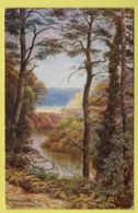 Hampshire - Bournemouth, Branksome Chine By A. R. Quinton  - J. Salmon 927 Postcard - 1925 - Bournemouth (until 1972)