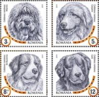 Romania 2019 / Dog Breeds / Set 4 Stamps - 1948-.... Républiques