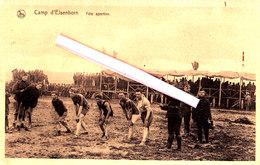 Camp D'ELSENBORN - Fête Sportive (le Départ De La Course) - Bütgenbach