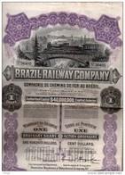 Brazil Railway Company - Compagnie De Chemins De Fer Au Brésil - Action Ordinaire De  100 Dollars - Railway & Tramway