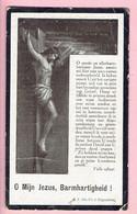Bidprentje - Ludovicus Josephus ADRIAENSSENS Wed. Joanna Maria Gabriëls - Beirendrecht 1850 - 1919 - Religion & Esotérisme