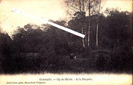 OOSTMALLE - Op De Heide - A La Bruyère - Malle
