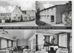 """AK 0166  Dübener Heide ( Gaststätte """" Ochsenkopf """" - Post Rotta , Kr. Gräfenhainichen / Ostalgie , DDR Um  1970 - Wittenberg"""