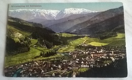MURZZUSCHIANG MIT SCHNEALPE - VIAGGIATA 1916 (1203) - Austria