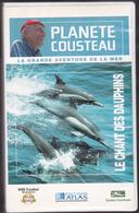 R19047  Planete Cousteau  Le Chant Des Dauphins - Documentaires