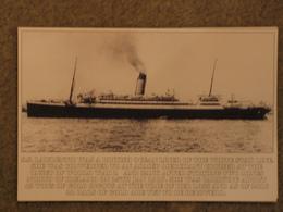 WHITE STAR LINE LAURENTIC - MODERN CARD - Steamers
