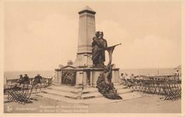 CPA - Belgique - Blankenberge - Blankenberghe - Monument De Bruyne Et Lippens - Blankenberge