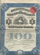 Action Et Titres  Credit Territorial Mexicano  No 24.943 - Actions & Titres