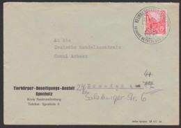 Neubrandenburg Mecklenburg 27.6.56 Betriebe Des Volkes, Abs. Tierkörper-Beseitigungs-Anstalt Sponholz - [6] République Démocratique