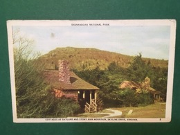 Cartolina Shenendoah National Park - Virginia - 1946 - Cartoline