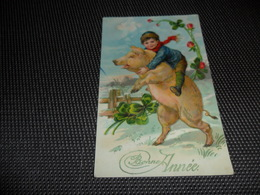 Cochon    Zwijn  Varken -   Enfant - Carte Brillante - Cochons