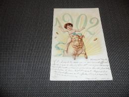 Cochon    Zwijn  Varken      Angelot   Année 1902  Jaartal - Cochons