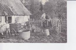 REPRODUCTION : La Fabrication Du Cidre En Normandie ( Calvados ) - Cultures