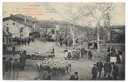81 MONTDRAGON Près Laboutarié Un Jour De Foire  Le Foirail Des Moutons Au Fond L'église - France