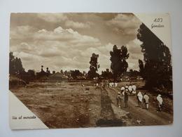 """Cartolina """"A.O.I.  Gondar VIA  AL MERCATO   Foto Edizione Gilli, Gondar Anni '30 - Etiopia"""