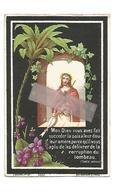 D 699. ALPHONSUS  FRANCK  Echtg. C. Coninckx -  Overleden Te ST-TRUIDEN 1883  (28j.) - Images Religieuses