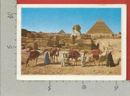 CARTOLINA VG EGITTO - GIZA - The Sphinx And The Pyramids - 12 X 17 - ANN. 2003 - Gizeh