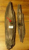 Bois Impacté (A1) WW1 14-18 - 1914-18