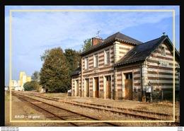56  BAUD  ... La  Gare  Desaffectee ... Les  Quais - Baud