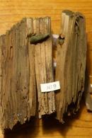 Bois Impacté (A9) WW1 14-18 - 1914-18