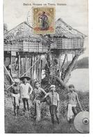 CPA PC British North Borneo Native Houses On Trees Borneo 1909 Malaysia British Protectorate - Malaysia