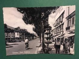 Cartolina Cattolica Viale Balneare - 1955 - Rimini