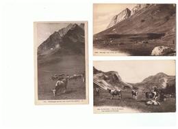 1908-631 11cp Vaches Alpages  La Vente Sera Retirée Définitivement Le 10-03 - Vaches