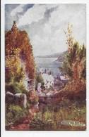 Above The Bay, Clovelly - Tuck Oilette 7233 - Clovelly