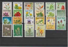 Maroc Lot De 22 Timbres ** MNH Fleurs Entre 1981 Et 1996 - Végétaux