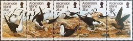 # Ascension 1987** Mi.443-47 Birds , MNH [26;49] - Birds