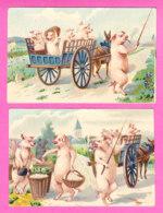 Animaux-534A56  Les Cochons Humanisés, Au Marché, En Charrette Tirée Par Un âne, 2 Cpa BE - Cochons