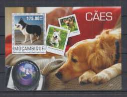 D611. Mozambique - MNH - 2014 - Nature - Fauna - Animals - Pets - Dogs - Bl - Timbres