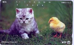 LSJP JAPAN PHONECARD (10) FAUNA CAT - Katzen