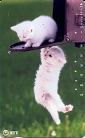 LSJP JAPAN PHONECARD (11) FAUNA CAT - Gatos