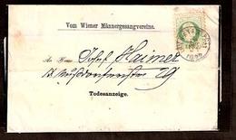 AUSTRIA. 1877 (29 Oct). Wien (Stadpost - Algergrund) Local P Matter Wrapper Local Usage / 3 Kr Fine Print / Wien Choral - Austria