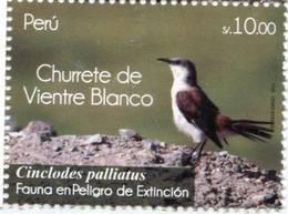 Lote P2011-8, Peru, 2011, Sello, Stamp, Churrete De Viente Blanco, Fauna In Danger Of Extinction, Ave Bird - Perú