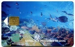 Saba - Satel SAB-03 - Marine Life - Antille (Olandesi)