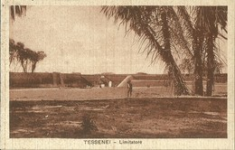 "2764 "" TESSENEI - LIMITATORE "" CART.POST. ORIG NON SPED. - Eritrea"