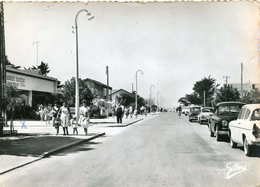 MONTALIVET   =  L' Avenue De L'Océan   486 - France