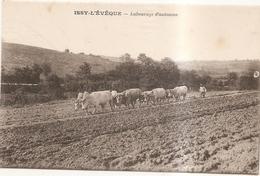 Issy L'eveque Labourage D'automne - Autres Communes