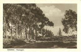 """2775 """" ASMARA - PAESAGGIO """" CART.POST. ORIG  NON SPED. - Eritrea"""