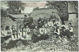 Bulgarie. Soirée Nationale à Pirdop. - Bulgarie